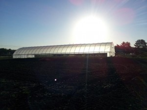 Hoop house at sunrise